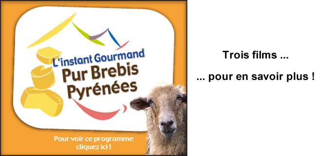 Instant gourmand, pur brebis des Pyrénées